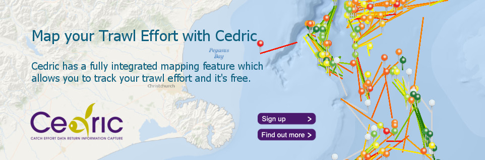 Cedric Mapping